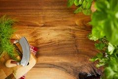 Aromatiska ingredienser på den wood tabellen med copyspace Aromatiska ingredienser på den wood tabellen med copyspa Royaltyfri Foto