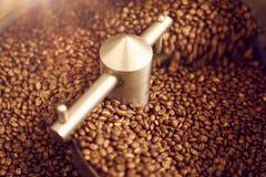 Aromatiska kaffebönor grillade nytt i en modern stekhet machi Arkivbild