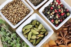 Aromatiska kryddor Fotografering för Bildbyråer