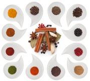 Aromatiska kryddor Arkivfoton