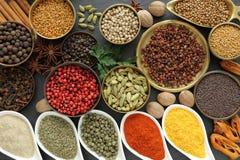 aromatiska kryddor Arkivfoto