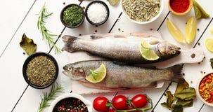 Aromatiska kryddor och grönsaker runt om fisk stock video
