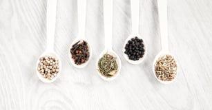 Aromatiska matmatlagningingredienser Svartvit peppar, kryddnejlika, kyndel, fänkålfrö Top beskådar Arkivbilder