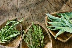 aromatiska nya örtar Royaltyfria Bilder