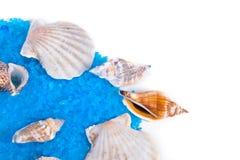 aromatiska salt skal Fotografering för Bildbyråer