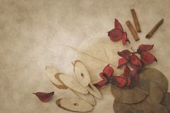 aromatiska torkade örtar Arkivfoton