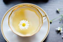 Aromatiskt organiskt naturligt växt- kamomillte Royaltyfria Bilder