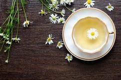 Aromatiskt organiskt naturligt växt- kamomillte Royaltyfria Foton