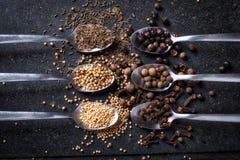 Aromatizza il sestetto, le spezie ed i cucchiai Immagini Stock