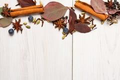 Aromatizza l'assortimento su fondo di legno bianco Fotografie Stock Libere da Diritti