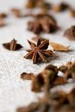 aromatyczna aniseed gwiazda zdjęcia stock