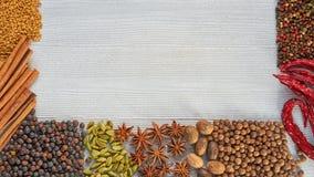 Aromatyczne pikantność na szarość betonu tle z kopii przestrzenią na centre Różnorodne Indiańskie pikantność i ziele obraz stock