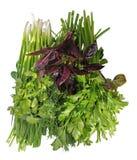 aromatyczni inkasowi ziele Zdjęcia Royalty Free