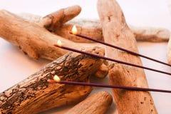 Aromatyczni kije łączący z dryftowym drewnem Fotografia Stock