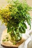 Aromatyczni ziele zdjęcie royalty free