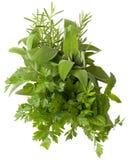 aromatyczni ziele Zdjęcia Royalty Free
