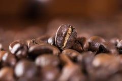 Aromatyczny kawowych fasoli tło, selekcyjna ostrość obraz stock