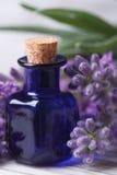 Aromatyczny lawendowego oleju pionowo makro- fotografia royalty free