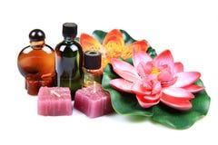 aromatyczny leczniczy naturalny obrazy royalty free