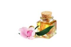 Aromatyczny lub wypachniony olej odosobniony zdjęcia stock