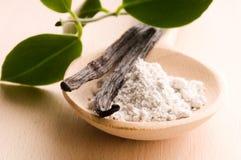 aromatycznych fasoli cukrowa wanilia Zdjęcia Stock