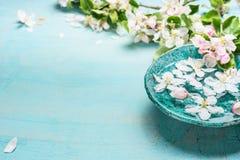Arombunken med vatten och vitblomningen blommar på sjaskig chic träbakgrund för turkosblått arkivfoton