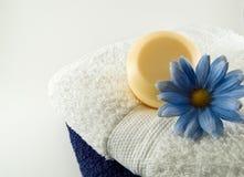 aromterapi royaltyfri bild