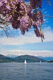 Arona, Lake Maggiore Royalty Free Stock Image