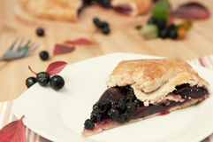 Aronia and apple pie Royalty Free Stock Photo
