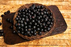 Aronia berries in a wooden box top view royalty free stock image