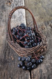 Aronia berries. On a wooden table Stock Images