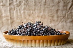 Aronia in bowl Royalty Free Stock Photo