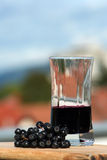 Aronia fruit and juice. Cranberry waccinium ashei fruit land juice ate summer Stock Image