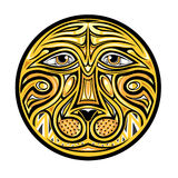 Around abstract face of lion Stock Photos