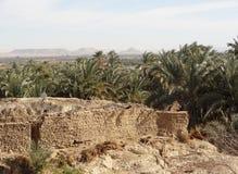 Around Bahariya Oasis Royalty Free Stock Images
