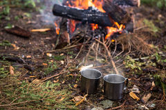 Around the campfire is a mugs. The fire in the forest on a halt. Around the campfire is a mugs Stock Photos