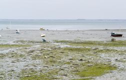 Around Cancale Stock Photography
