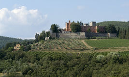 Around Castle of Brolio in Chianti Stock Image