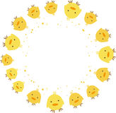A around of chicks. Abstract  illustration of A group of chicks Royalty Free Stock Photography