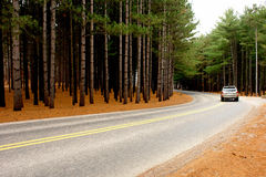 Around the curve. A picture of the wooded curve, around which a car travels Royalty Free Stock Image