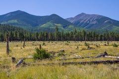 Around the Peaks Loop: FR 418 Stock Images