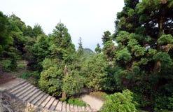Around Reikado Hall, Mount Misen trail on Miyajima Japan. Royalty Free Stock Photo