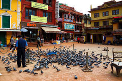 Around the stupa of pigeons Royalty Free Stock Photo
