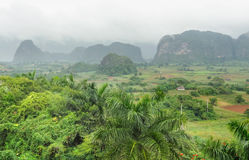 Around Vinales Valley in Cuba Stock Image