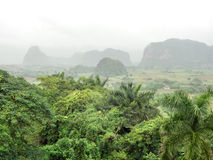 Around Vinales Valley in Cuba Stock Photo