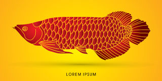 Arowana Fish graphic vector. Royalty Free Stock Photos