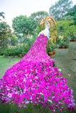 Arpet装饰的孔雀兰花 库存图片