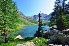 arpy λίμνη Στοκ εικόνα με δικαίωμα ελεύθερης χρήσης
