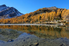 Arpy lake reflection with autumn trees Stock Image
