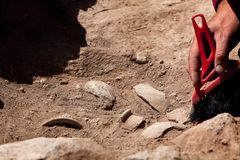 Arqueólogo que trabaja en el sitio, mano con el cepillo imágenes de archivo libres de regalías